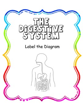 Label the Digestive System Diagram