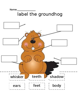 Label the Groundhog