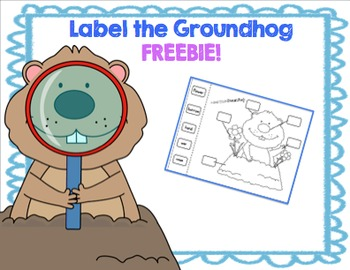 Label the Groundhog FREEBIE
