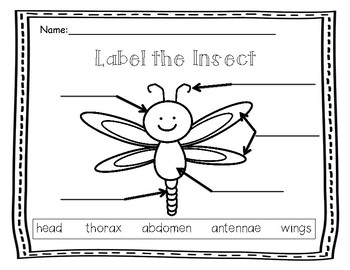 Insect Label It