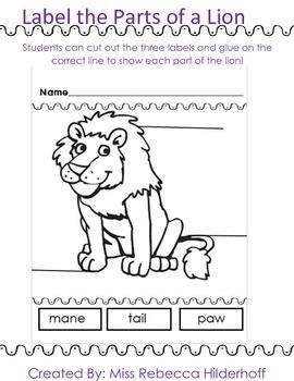 Label the Lion Worksheet