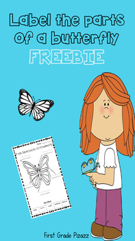 Parts of a Butterfly Label Activity FREEBIE