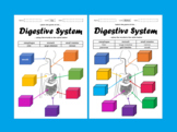 Label the Parts of the Digestive System - Differentiated [Remote Learning]