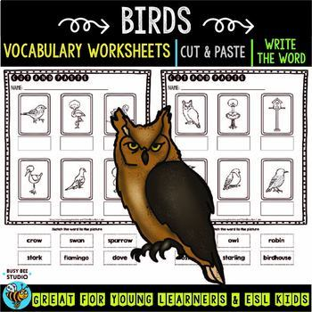 Label the Pictures Worksheets | Birds