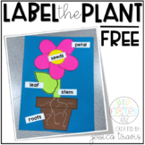 Label the Plant Craft {freebie}