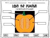 Label the Pumpkin