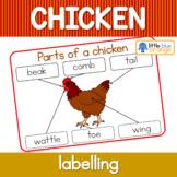 Label the chicken / parts of a chicken worksheet