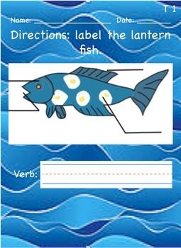 Label the lantern fish