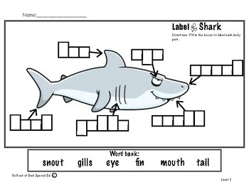 Label the shark