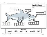 Label the shark