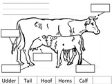 Labeling Farm Animals