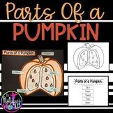 Labeling Parts of a Pumpkin