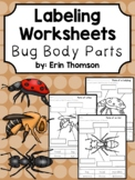 Labeling Worksheets ~ Bug Body Parts