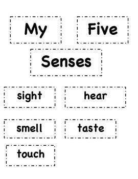 Labeling the 5 Senses Activity