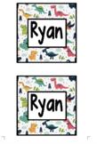 Labels - Dinosaur Theme (Editable)