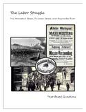 Labor Struggle: Homestead and Pullman Strikes, Haymarket Riot