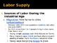 Labor and Labor Supply PowerPoint Lecture