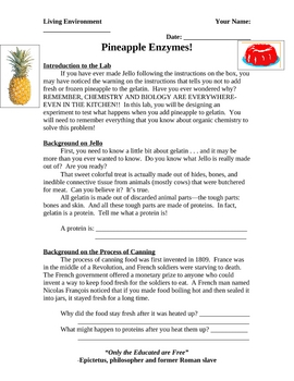 Laboratory activity- Enzymes in Pineapple and their effects on Jello