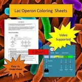 Lac Operon Made Simple Coloring Sheets - Video Supported