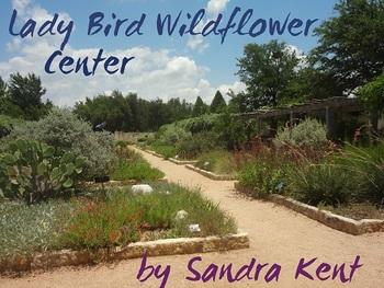 Nature Center  Plants