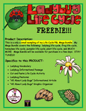 Lady Bug Life Cycle FREEBIE:  This is part of Life Cycle MEGA BUNDLE