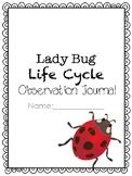 Lady Bug Life Cycle Journal