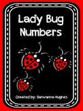 Lady Bug Numbers