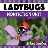 All About Ladybugs Nonfiction Unit