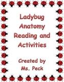 Lady bug anatomy reading