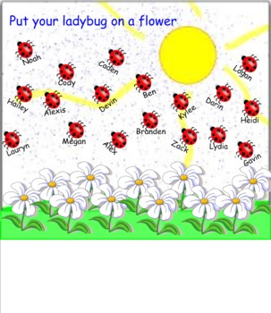 Lady bug and Flower Smart Board Attendance