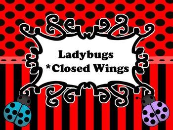 LadyBugs: Closed Wings