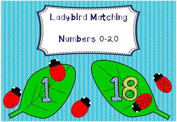 Ladybird Matching - Numbers 0 to 20