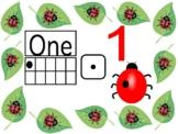 Ladybug 1-10 poster