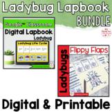 Ladybug Activities Interactive Notebook Digital and Printable Bundle