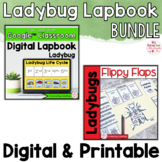Ladybug Activities Interactive Notebook Digital and Printa