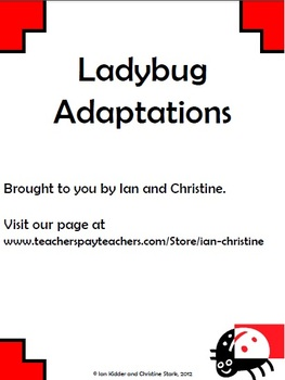 Ladybug Adaptations Graphic Organizer