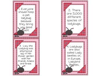 Ladybug Author's Purpose Game
