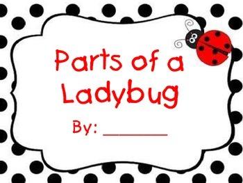 Ladybug Parts