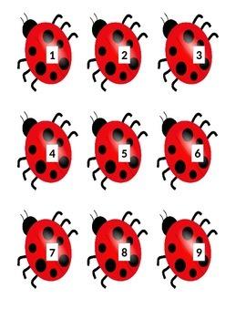 Ladybug Book Box Numbers
