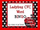 Ladybug CVC Word Bingo