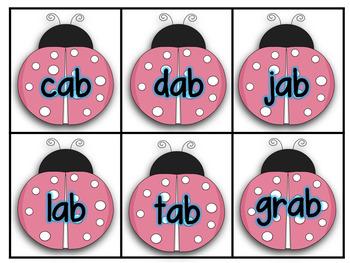Ladybug CVC and CCVC Flashcards