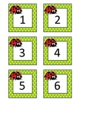 Ladybug Calendar Number Cards 1-31(Plus Blank Cards)