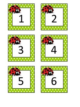 Ladybug Calendar Number Cards 1-31(Plus Blank Cards)