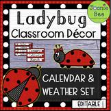 Ladybug Calendar and Weather Set (EDITABLE)