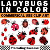 Ladybug Clipart for Commercial Use Digital Moveable Pieces Insects and Bugs
