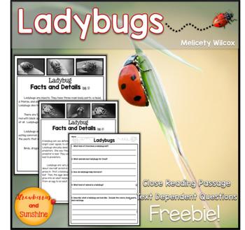 Ladybug Close Reading Passage Freebie!