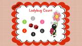 Ladybug Count