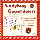 Ladybug Countdown For Counting Backwards Ten to One