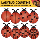 Ladybug Counting Scene Clipart