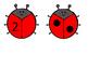 Ladybug Counting Subitizing Matching Cards